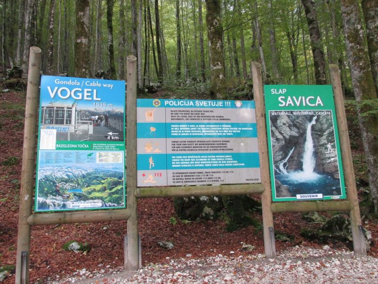 Mount Vogel & Savica Waterfalls