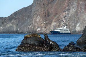 Ecoventura Origin Galapagos Islands